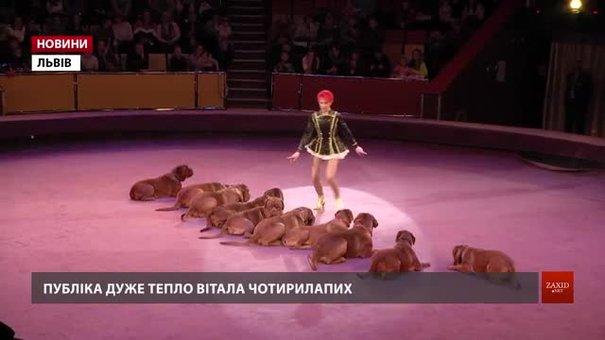 У Львівському цирку вперше в Україні встановили рекорд з кількості собак в одному шоу