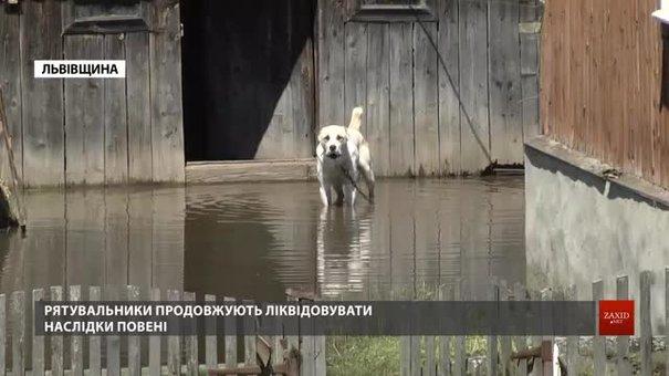 Мешканці підтоплених сіл на Старосамбірщині показали свої хати й городи після повені