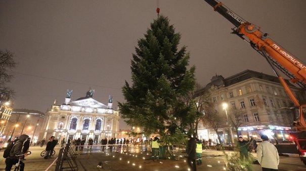У центрі Львова встановили новорічну ялинку