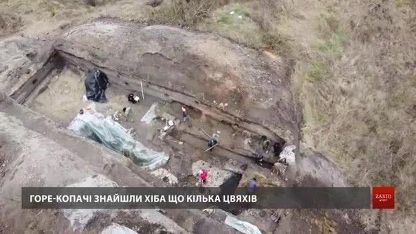 Вандали знищили розкопки археологів у Звенигороді