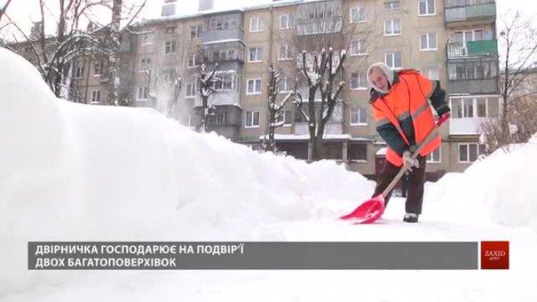 87-річна львівська двірничка вправно господарює під час снігопаду