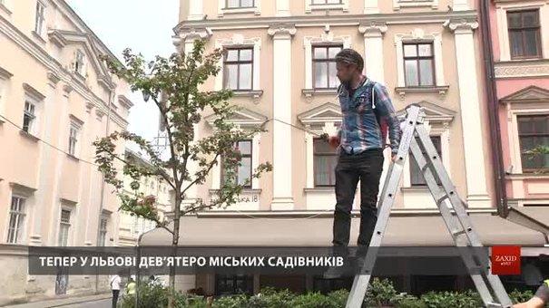 Міські садівники Львова розповіли про свою роботу