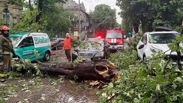 Головні новини Львова за 25 червня