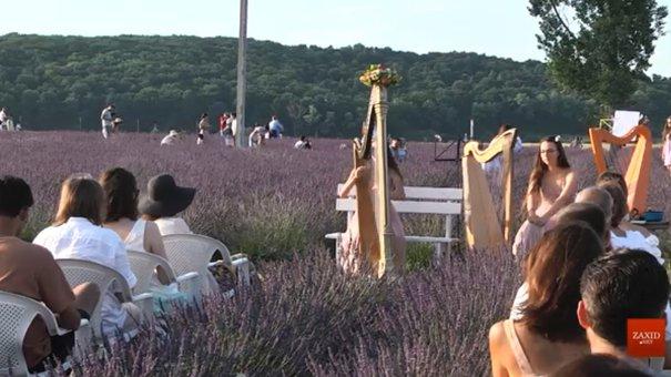 Квіткові тури набирають все більшої популярності серед мандрівників