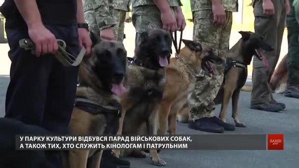 У львівському Парку культури відбувся парад військових собак