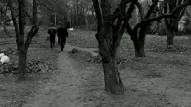 Троє спортсменів до смерті побили чоловіка у Львові