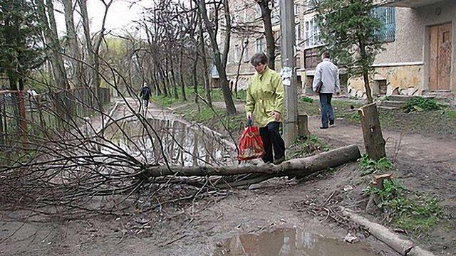 У 2011 році львів'яни скаржились на шкоду довкіллю 38 разів