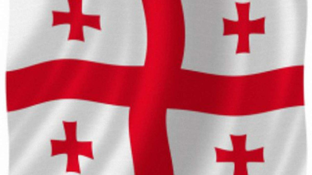 У Грузії опозиція перемогла з відривом у 14,42%