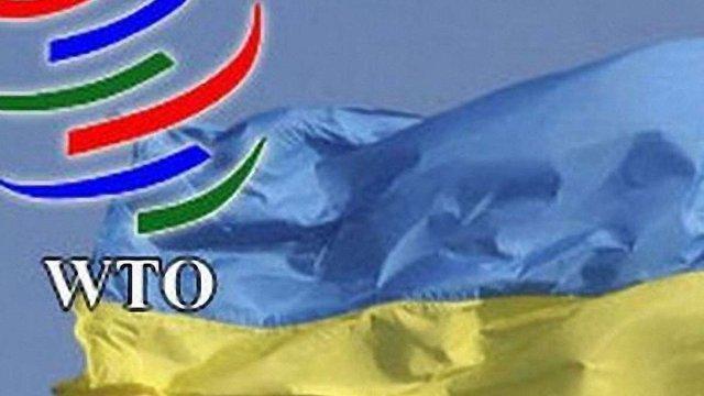 30 членів СОТ проведуть переговори з Україною по розміру мит