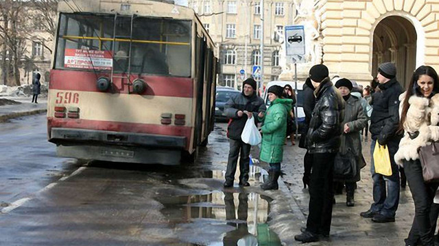 У Львові дерева обірвали електромережі: не курсують тролейбуси №№2 і 12