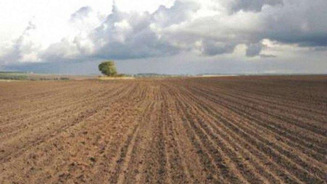 На Львівщині самовільно захопили землі вартістю майже 2 млн. грн