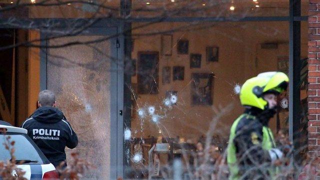 Данська поліція застрелила ймовірного нападника на кафе і синагогу