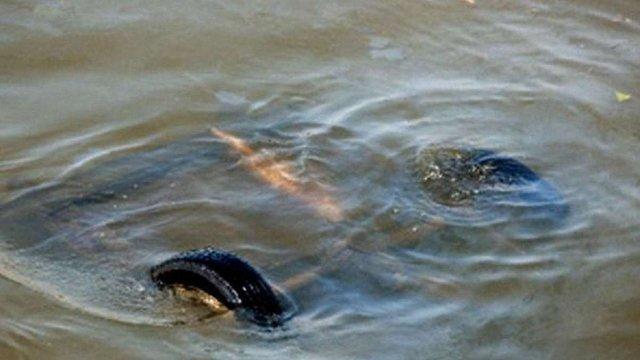 На Волині у річці затонув автомобіль з чотирма пасажирами, двоє з них - діти