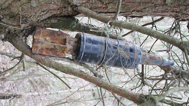 У лісі неподалік Львова знайшли п'ять артснарядів, один із яких висів на дереві