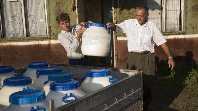 Компанія «Галичина» обіцяє виплатити селянам борги за молоко цього року