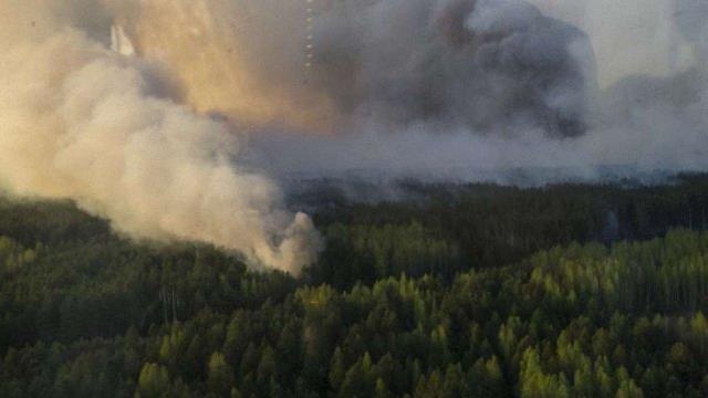 Зміни радіоактивного фону через пожежу у «Чорнобильській пущі» немає, - Яценюк