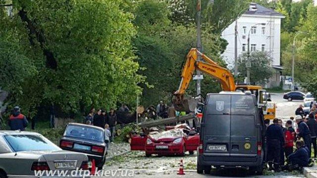 У Києві повалене вітром дерево розчавило дитину в автомобілі