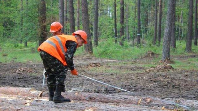 У Бродах горить лісопромисловий комплекс