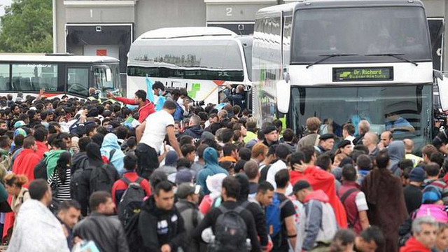 Європарламент прийняв резолюцію щодо прав біженців