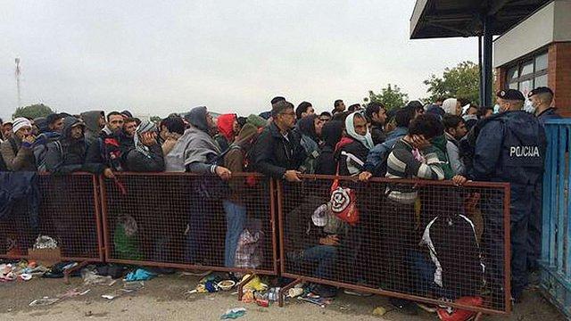 Майже 60 тисяч біженців перетнули сербсько-хорватський кордон