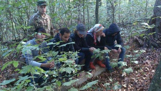 На Закарпатті прикордонники затримали кілька груп нелегалів