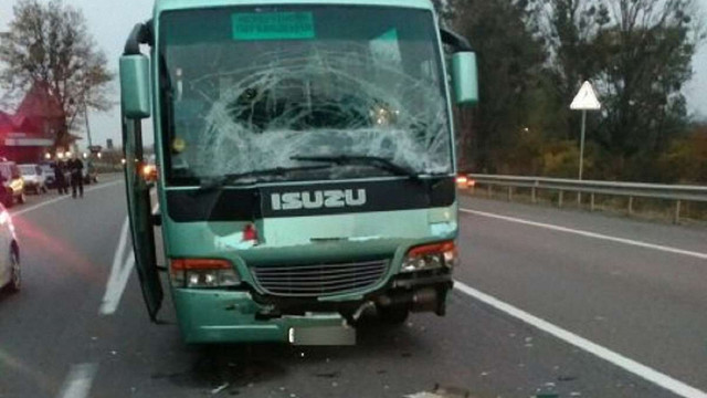 На трасі Київ-Чоп у ДТП потрапив екскурсійний автобус зі школярами: постраждали 7 дітей