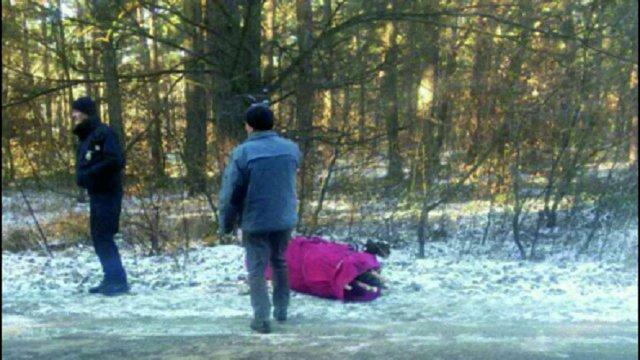 У Львові затримали безхатченка, який зрубав вісім ялинок