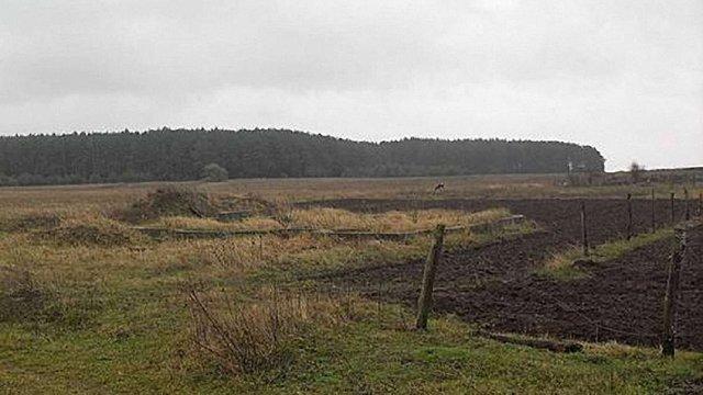 Біля міжнародної траси на Львівщині 6 га землі незаконно передали у приватну власність