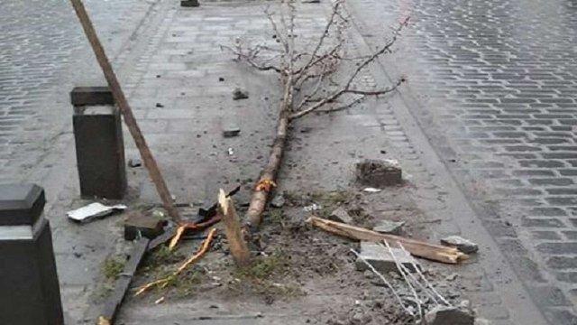 Автомобілем, який зламав дерева на Городоцькій, керував слідчий поліції