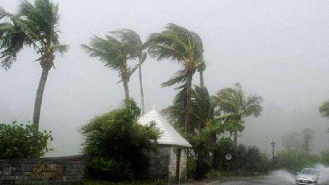 У Вашингтоні через шторм без електрики залишилися понад 200 тис. будинків