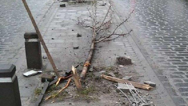 Слідчого, який зламав дерева на вул. Городоцькій, звільнили з поліції