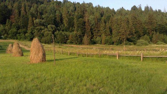 Купувати землю зможуть лише українці
