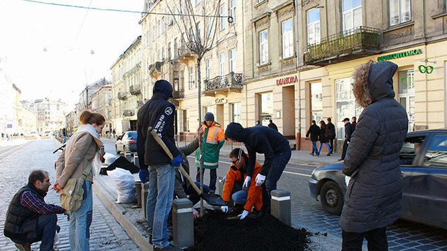 На вул. Городоцькій у Львові досадили зламані поліцейським сакури