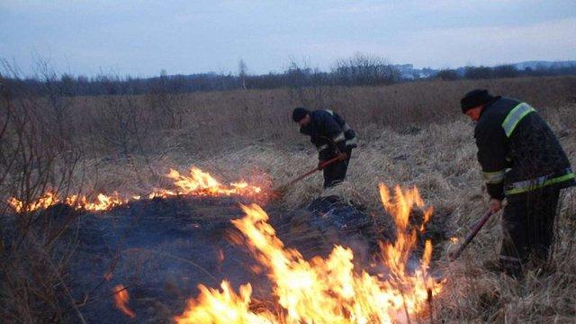 На Львівщині за добу виникло 13 пожеж у екосистемах