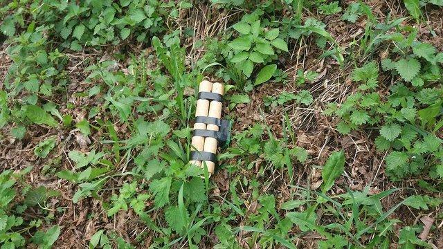 Біля Парку культури у Львові виявили муляж вибухівки