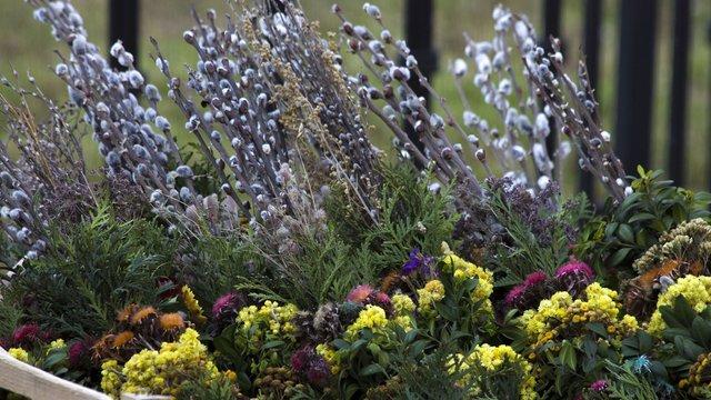 Християни східного обряду відзначають Вербну неділю
