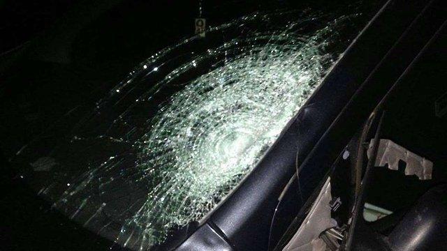 Біля Червонограда 12-річна дівчинка загинула під колесами автівки екс-начальника поліції