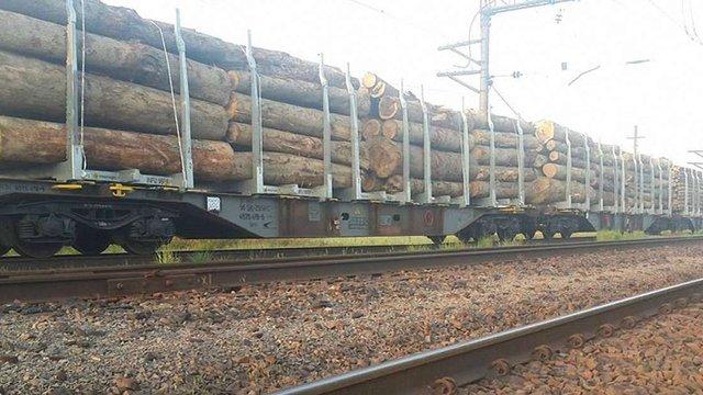 У Ходорові поліція затримала 53 вагони контрабандної деревини