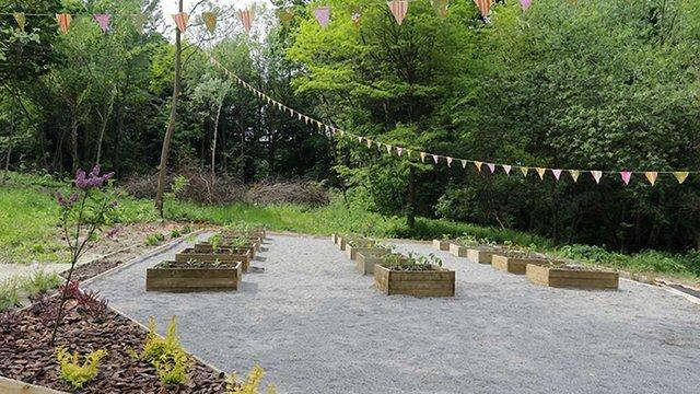У львівському парку відкрили соціальний овочевий город