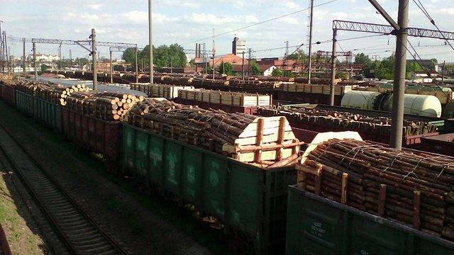 Громадські активісти заблокували у Львові майже 200 вагонів з деревиною