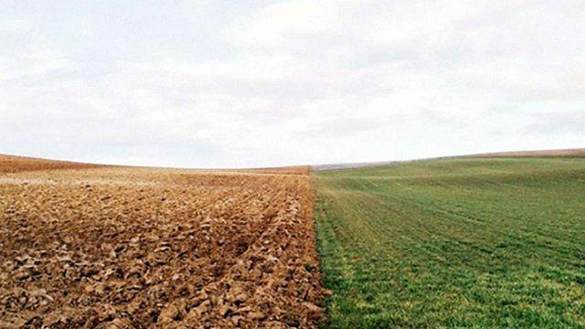 На Рівненщині невідомі скуповують земельні ділянки учасників АТО