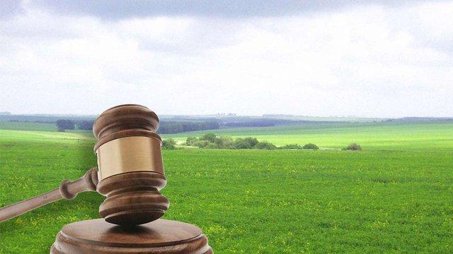 Право оренди п'яти сільськогосподарських земельних ділянок продали за майже ₴700 тисяч