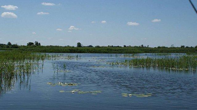 Львівська облдержадміністрація здасть в оренду п'ять ділянок зі ставками