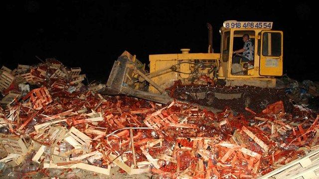 У Росії бульдозером розчавили 38 тонн полуниці з України