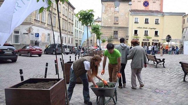 У Львові проводять конкурс на найкраще озеленення подвір'я та дахів