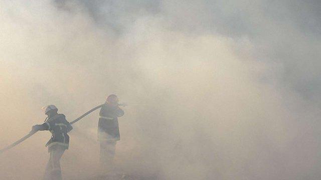 У Чорнобильській зоні сталася пожежа, горить 15 га лісу