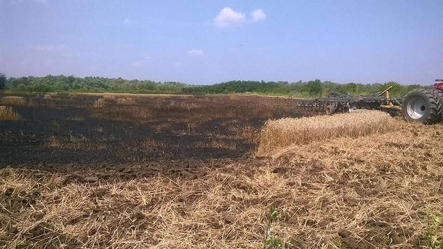 За пожежі в екосистемах на Львівщині покарали 82 особи
