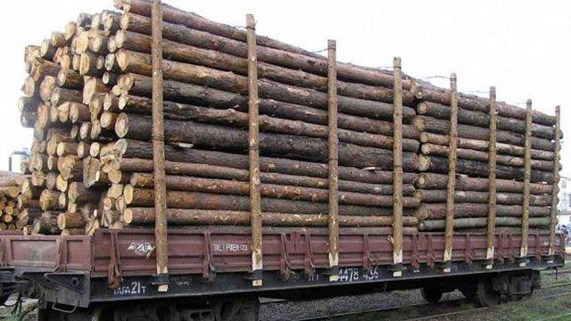 На Закарпатті суд конфіскував два вагони з лісом, який везли до ЄС