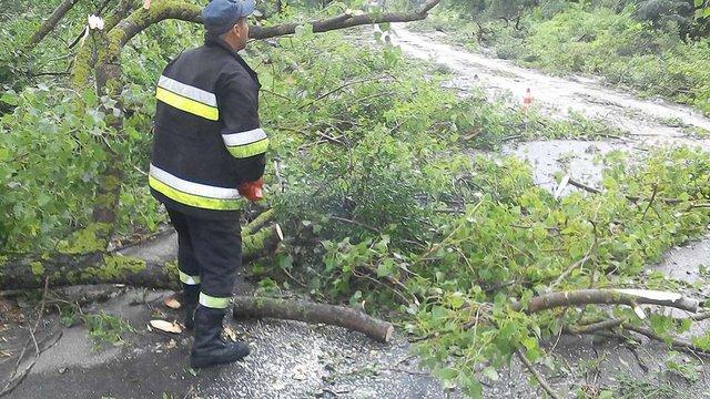 Негода наробила шкоди на Львівщині