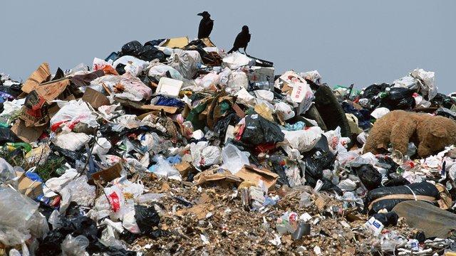 У селах поблизу Львова виникли проблеми із вивозом сміття